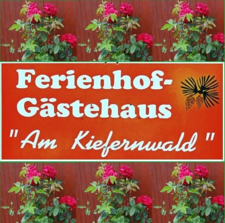Ferienhof-Gästehaus 'Am Kiefernwald' Ribnitz-Damgarten in 18311 Ribnitz-Damgarten,  Bei den Borger Tannen 6 - Zimmervermietung im Ortsteil Borg der Bernsteinstadt Ribnitz-Damgarten seit 1993 - seither kehrten bereits zahlreiche Gäste mehrmals bei uns ein, was uns natürlich ganz besonders freut.