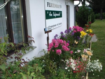 Farbenprächtige Blumenrabatten und Koniferen vor der Zimmervermietung Ferienhof Am Kiefernwald  erfreuen die Sinne. Fotos: Eckart Kreitlow