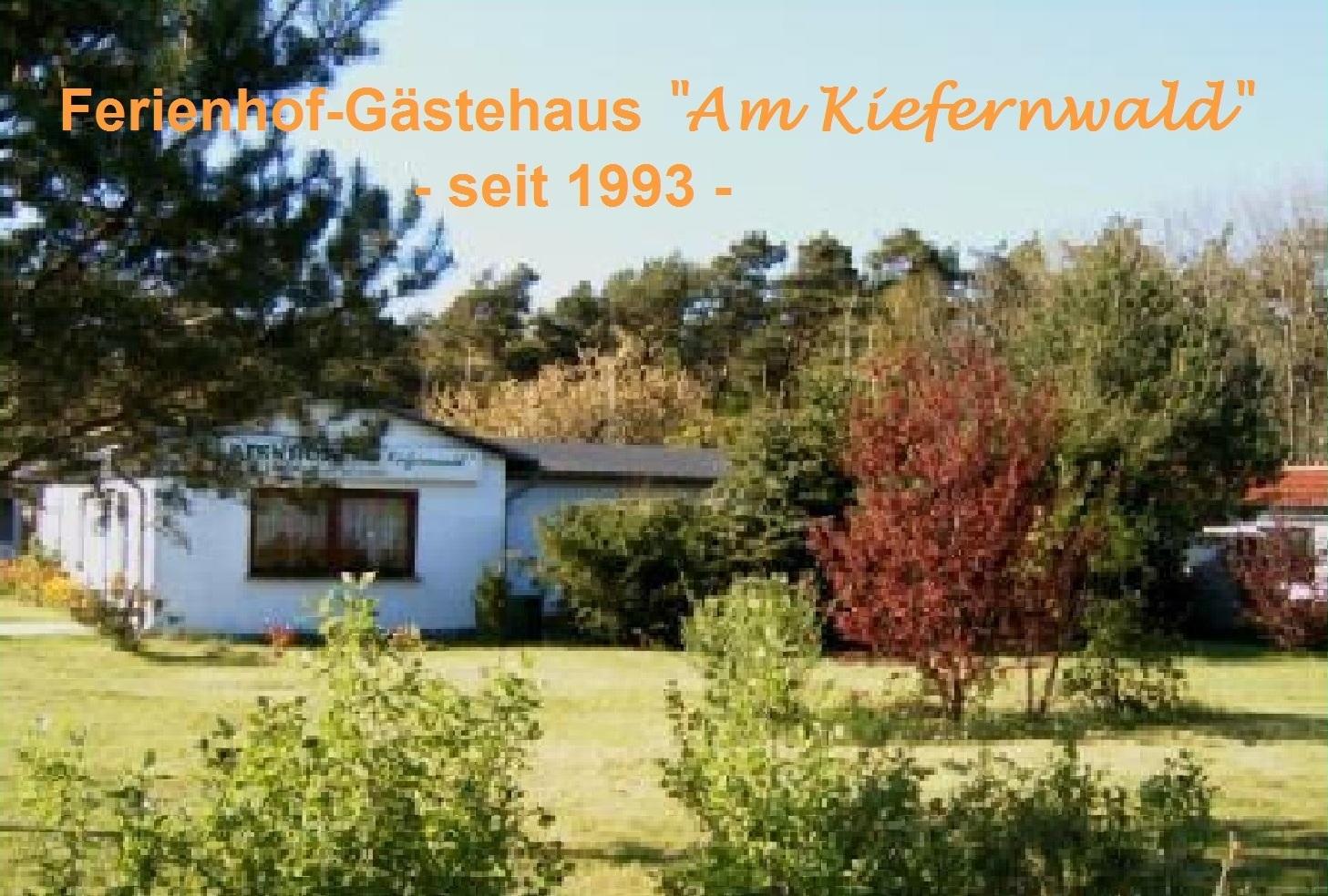 Südseite der Zimmervermietung Ferienhof Am Kiefernwald im Ortsteil Borg der Bernsteinstadt Ribnitz-Damgarten. Von hier aus sind es bis zur Ostsee und zur Halbinsel Fischland nur wenige Kilometer. Seit dem Jahre 2001 führt sogar ein Radweg an der Zimmervermietung Ferienhof Am Kiefernwald vorbei, der in das Ostseeradwegenetz integriert ist.